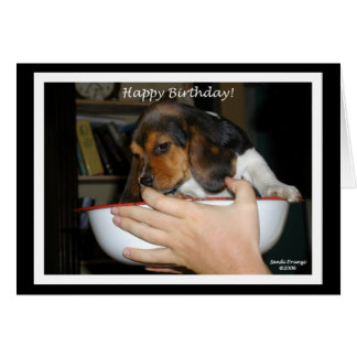 Beagle Puppy Birthday Card