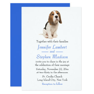 Beagle Puppy Dog Blue Wedding Invitation