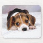 Beagle Puppy Dog Mousepads