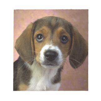 Beagle Puppy Dog Notepad