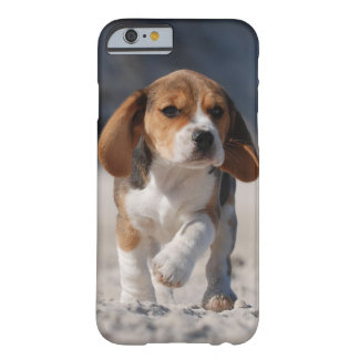 Beagle puppy iPhone 6 case