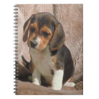Beagle Puppy Notebook