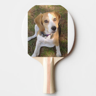 Beagle sitting 2 Ping-Pong paddle