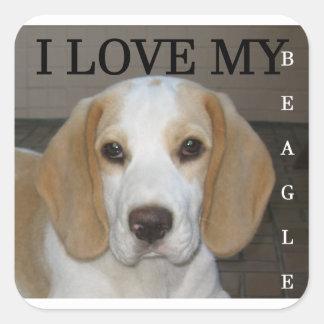 Beagle  tan and white love pic square sticker