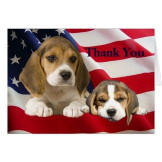 Beagle Thank You Greeting Card