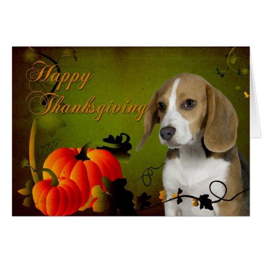 Beagle Thanksgiving Card
