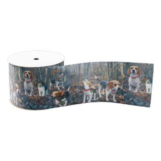 Beagles in the Woods Beagle Ribbon Grosgrain Ribbon