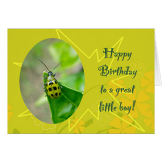 Bean Beetle Little Boy Birthday Card