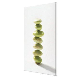 Beans,Food Canvas Print