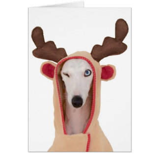 Beans Winking Reindeer blank cards