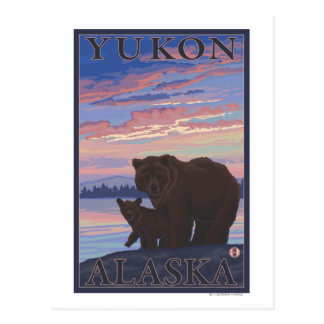Bear and Cub - Yukon, Alaska Postcard