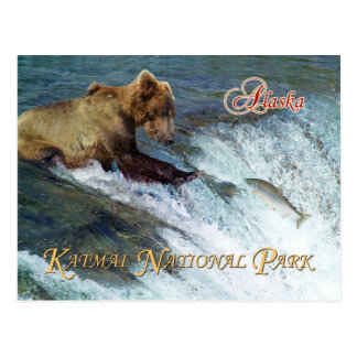 Bear catching salmon, Katmai National Park, AK Postcard