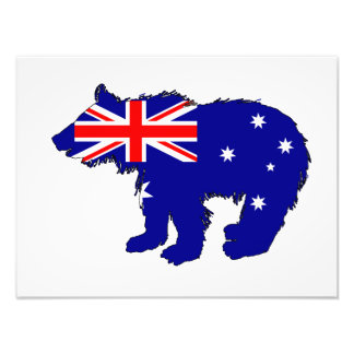 "Bear Cub ""Australia"" Photo Print"