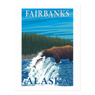 Bear Fishing in River - Fairbanks, Alaska Postcard