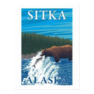 Bear Fishing in River - Sitka, Alaska Postcard