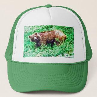 Bear in Alaska, on hat
