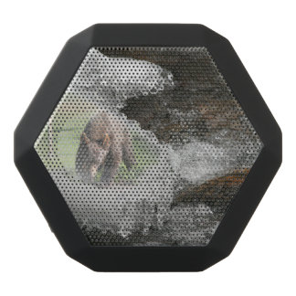 Bear in Icy River Black Bluetooth Speaker