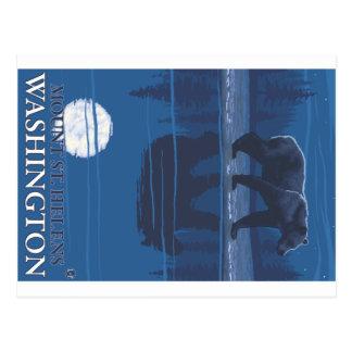 Bear in Moonlight - Mount St. Helens, Washington Postcard