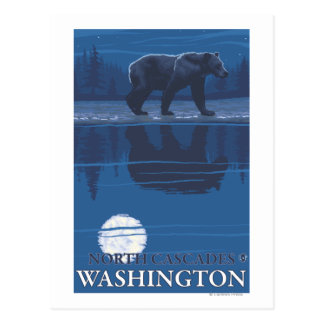 Bear in Moonlight - North Cascades, Washington Postcard