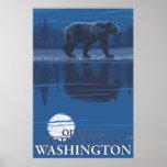 Bear in Moonlight - Olympic National Park, WA