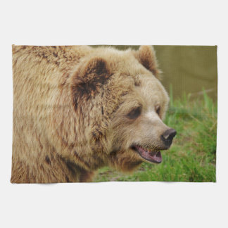 Bear in the wild kitchen towel
