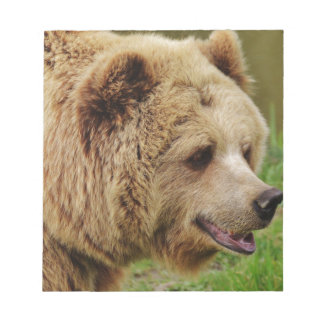 Bear in the wild notepad