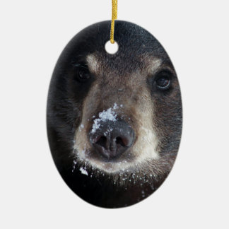 Bear Kisses Anyone? Ceramic Ornament