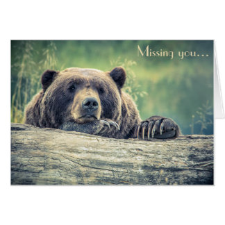 Bear Photograph Card: Missing You or any Occasion Card