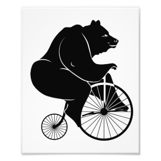 Bear Riding a Vintage Penny Farthing Bicycle Photograph