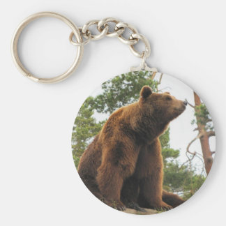 BEAR SITTING ON A ROCK BASIC ROUND BUTTON KEYCHAIN