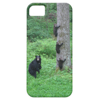 Bear & Three Cubs iPhone 5 Cover