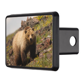 bear trailer hitch cover