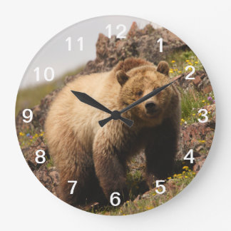 bear wallclocks