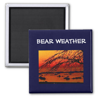 BEAR WEATHER MAGNET