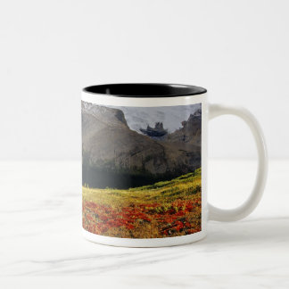 Bearberry in early autumn Athabasca Peak in the Mugs