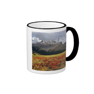 Bearberry in early autumn Athabasca Peak in the Coffee Mug