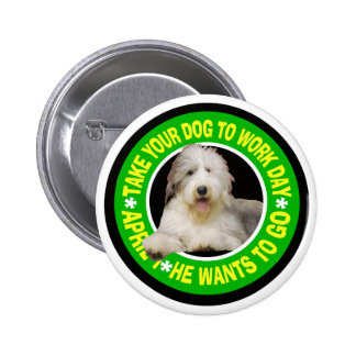 BEARDED COLLIE BUTTONS