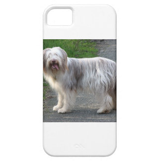 Bearded Collie Dog Case For The iPhone 5