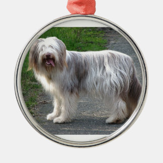 Bearded Collie Dog Silver-Colored Round Ornament
