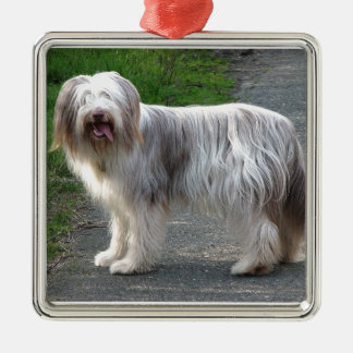 Bearded Collie Dog Silver-Colored Square Ornament
