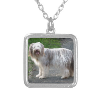 Bearded Collie Dog Silver Plated Necklace