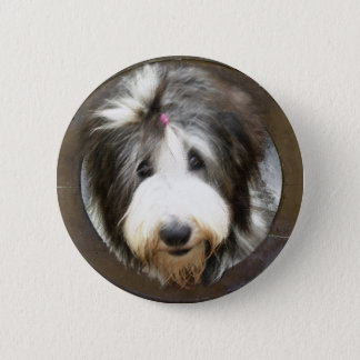 Bearded collie face in old wooden frame 2 inch round button