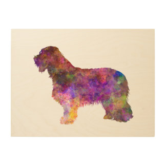 Bearded collie in watercolor wood print