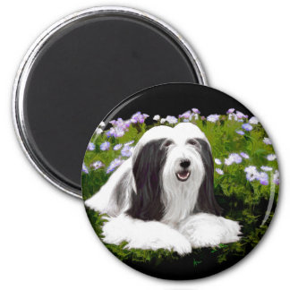 Bearded Collie (Painted) Magnet