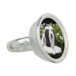 Bearded Collie (Painted) Rings