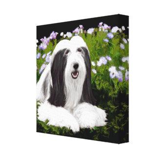 Bearded Collie Painting - Cute Original Dog Art Canvas Print