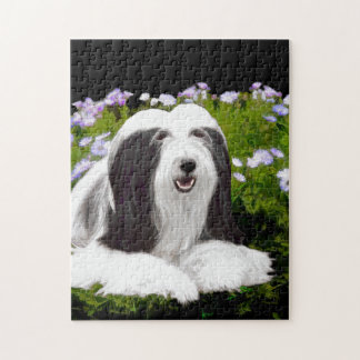 Bearded Collie Painting - Cute Original Dog Art Jigsaw Puzzle