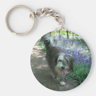 bearded collie walking basic round button keychain