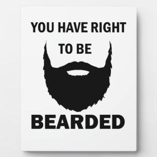 bearded cubby plaque