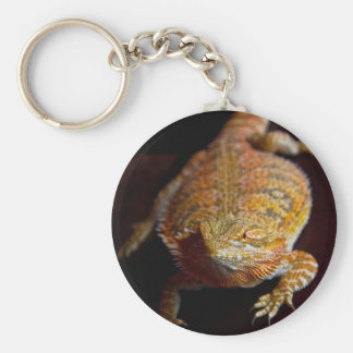 Bearded Dragon Basic Round Button Keychain